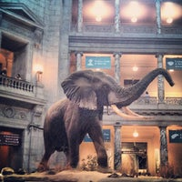 Photo taken at National Museum of Natural History by Mark M. on 7/5/2013