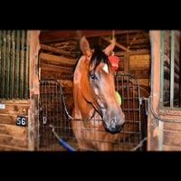 Photo taken at Remington Park Racetrack & Casino by Yenni V. on 8/9/2012