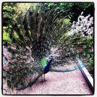 Photo taken at Philadelphia Zoo by Jeff P. on 4/28/2012