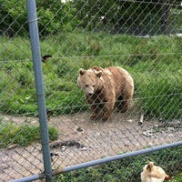 Photo taken at Space Farms Zoo & Museum by Stacey D. on 6/3/2012