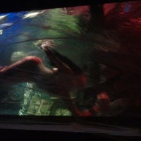 Photo taken at Dive Bar by Bigg O. on 11/1/2011