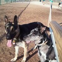 Photo taken at Camp Barkeley Dog Park by Brandon A. on 2/24/2011