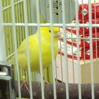 Photo taken at PetSupermarket by Robert C. on 6/25/2012