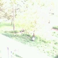 Photo taken at Lake Superior Zoo by Machelle K. on 5/22/2012