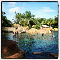 Photo taken at Discovery Cove by Kenny H. on 8/25/2012