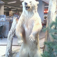 Photo taken at Bass Pro Shops by Joey R. on 3/11/2012