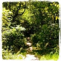 Photo taken at Big Gunpowder Trail by Adrienne G. on 8/18/2012