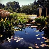 Photo taken at Denver Botanic Gardens by Stevie V. on 7/26/2012