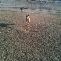 Photo taken at Memphis Dog Park by Katie P. on 1/8/2011