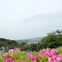 Photo taken at 霊山寺 by taka_pu on 5/13/2012