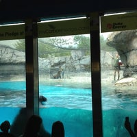 Photo taken at Indianapolis Zoo by Vic R. on 9/3/2012