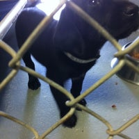 Photo taken at Athens-Clarke County Animal Control by Fabiola R. on 3/30/2012