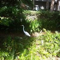 Photo taken at Crowne Plaza Resort by John B. on 1/1/2012