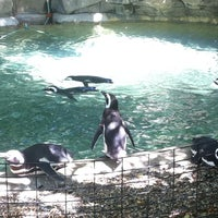 Photo taken at Blank Park Zoo by Katie H. on 8/7/2011
