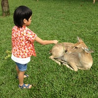 Photo taken at Khao Kheow Open Zoo by Zippoman P. on 3/18/2012