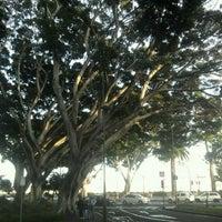 Photo taken at Ramblas de Santa Cruz by MIGUEL A. N. on 1/12/2012