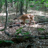 Photo taken at Durant Nature Park by Scott R. on 6/14/2012