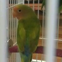 Photo taken at PetSupermarket by Diamond_diva_23 on 6/9/2012