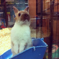 Photo taken at Bayshore Shopping Centre by Matt 5. on 2/27/2012