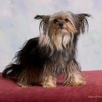 Photo taken at Edwin A. Davis Photography by Edwin D. on 6/23/2012
