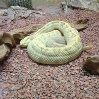 Photo taken at Reptile House by Joe C. on 3/26/2012