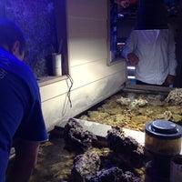 Photo taken at Aquarium City by Rebecca F. on 11/15/2011