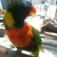 Photo taken at ABQ BioPark Zoo by Zoe C. on 6/17/2012