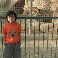 Photo taken at Doha Zoo by cT S. on 6/10/2012