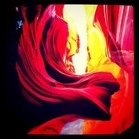 Photo taken at Peter Lik Fine Art Gallery by Jane C. on 10/4/2011