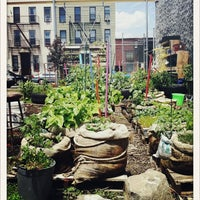 Photo taken at Hayseed's Big City Farm Supply by Nicole F. on 6/2/2012