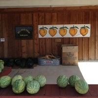 Photo taken at Wild Boar Farms by Daniel L. on 6/2/2012