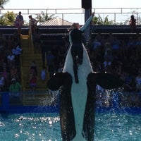 Photo taken at Miami Seaquarium by Robb C. on 2/23/2012