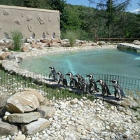 Photo taken at Lehigh Valley Zoo by Anthony V. on 8/22/2011