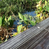 Photo taken at Green Cay Wetlands by L. Gaye H. on 3/1/2012