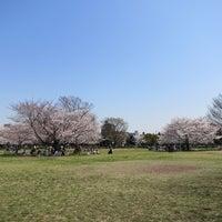 Photo taken at Kiba Park by motohide on 4/9/2012