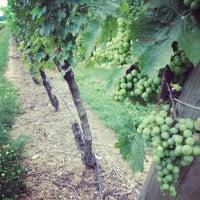 Photo taken at Newport Vineyards by Bruna C. on 7/28/2012