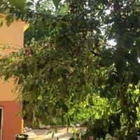 Photo taken at Aydinlar(avgadi) by Taner on 7/21/2012