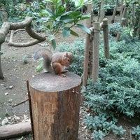 Photo taken at Inokashira Park Zoo by Ichiro.S on 9/23/2011
