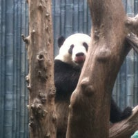 Photo taken at Giant Panda Research Station by Dylan M. on 9/24/2011