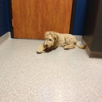 Photo taken at Blue Springs Animal Hospital by Jason A. on 4/20/2012