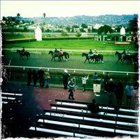 Photo taken at Golden Gate Fields by Paul E. on 1/30/2012