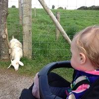 Photo taken at Noah's Ark Zoo Farm by Kris P. on 8/25/2012
