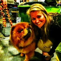 Photo taken at 2012 Westminster Dog Show by melissa h. on 2/14/2012