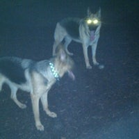 Photo taken at Du Page Forest Preserve Dog Park by Clay P. on 9/29/2011
