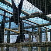 Photo taken at Noah's Ark Zoo Farm by Rokin M. on 8/9/2012