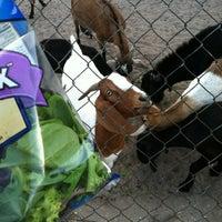 Photo taken at CJ Goat Farm by Lauren C. on 9/3/2012