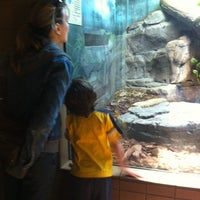 Photo taken at Reptile House by Beau G. on 3/25/2012
