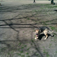 Photo taken at White Rock Lake Dog Park by Richard W. on 2/26/2012