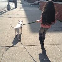 Photo taken at Veterans Grove Dog Run by Mariana B. on 3/18/2012