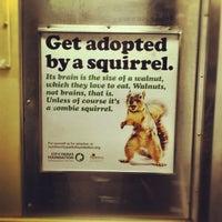 Photo taken at MTA Subway - J Train by James P. on 7/11/2012